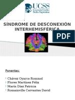 Sindrome Desconexion Interhemisferica