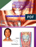HORMONA TSH