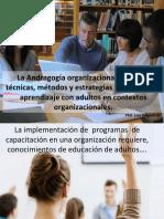 Andragogía y aprendizaje organizacional