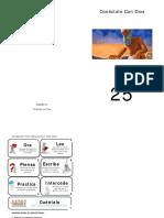 CCD25.pdf