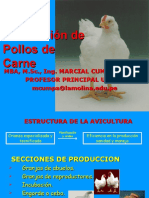 Clase 02 Pollos de Carne