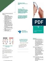 blood glucose project brochure