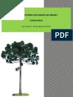 Ato Guarani – 09 de Agosto de 2013 (Comentário)
