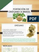 Exportación de Orégano a Brasil