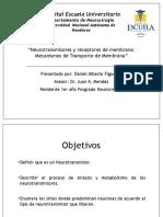 Neurotransmisores y Receptores de Membrana