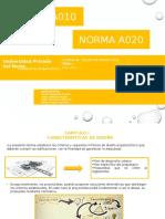 Version 1 Normas a010 y a020