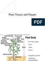 Plant Tissue Bio200