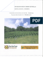 Agroecologia en Mani Estrtella o Sacha Inchi SIEMBRA