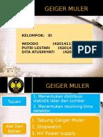 Geiger Muler