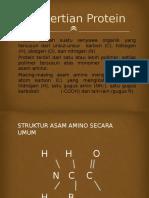 PPT Protein
