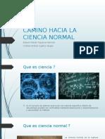 Camino Hacia La Ciencia Normal