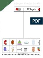 magnet summative assessment