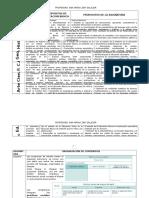 Formatos de Estructura de Los Programas Completos