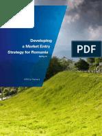 Developing Market Entry 2014 en 1