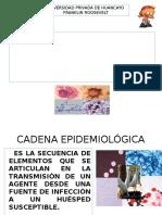cadena epidemiologica e historia natural de la enfermedad