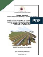 Hybrid Model for Surface Irrigation Advance Phase