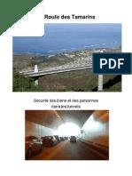 Routes des Tamarins, Détection Automatique d'Incident