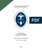 Informe Layout, Equipo Y Mantenimiento - Primer Avance