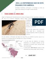 Qué Es El Virus Zika