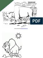 Buku Mewarnai Gambar Bison