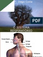 Aula de Sistema Respiratório Enfermagem PDF