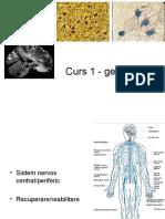 Neurologie Curs 1