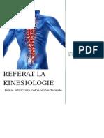 Structura coloanei vertebrale