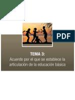 Articulacion y Transversalizacioni.pdf