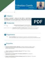CV Geury Tolentino Carela