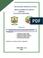 DEPARTAMENTO ACADÉMICO DE CIENCIAS AGRARIAS.docx