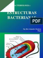 Teoria_2._Estructura_-_Nutricion__bacteriana
