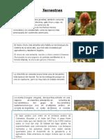 Animales en Extinción Perú