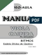 93b3e7c6712a5 A VIOLA CAIPIRA DE TIÃO CARREIRO - João Paulo do Amaral Pinto - sem ...