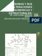 CROMOSOMAS Y SUS ALTERACIONES NUMERICAS Y ESTRUCTURALES.ppt