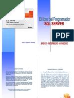 manual de sql server 2008