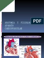 1º diapo_MedicoQuirurgica_ANATOMIA  Y  FISIOLOGIA  DEL  APARATO CARDIOVASCULAR.ppt