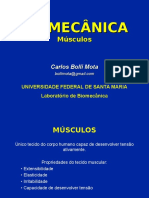 Apresentação sobre Músculos