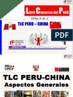 11 Tlc Peru-china 2013-2