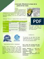 Proyectos Posters