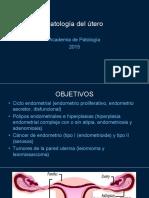2. Patología Del UTERO3