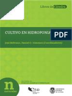cultivo de hidroponia