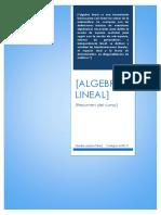 ALGEBRA LINEAL-SANDRO LOZANO PÉREZ