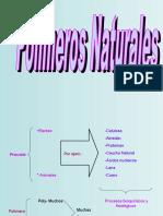polimers_[Autoguardado][1]