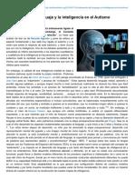 Autismodiario.org-El Desarrollo Del Lenguaje y La Inteligencia en El Autismo