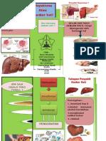 Leaflet Hepatoma