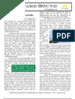 Homeward Bound Ministries Newsletter - V11 - N12