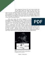 Pleura Disease