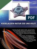 Diatomee