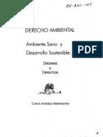 Libro Ambiente Sano Desarrollo Sost.