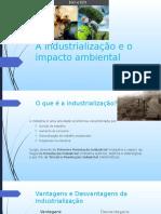 A Industrialização e o Impacto Ambiental- Filosofia